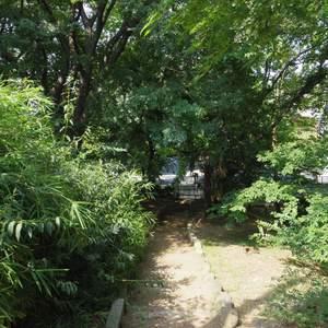 中野松が丘ホワイトマンションの近くの公園・緑地