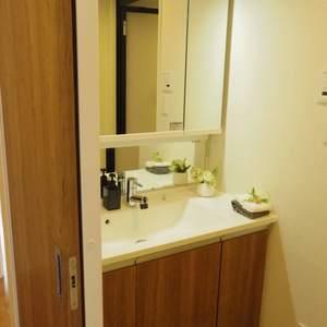 中野松が丘ホワイトマンション(2階,3580万円)の化粧室・脱衣所・洗面室
