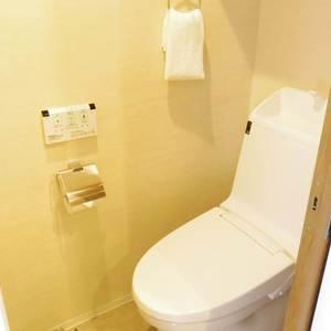 中野松が丘ホワイトマンション(2階,3580万円)のトイレ