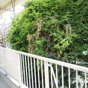 中野松が丘ホワイトマンション(2階,3580万円)のお部屋からの眺望