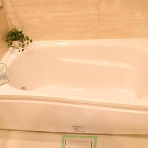 牛込ハイム(14階,)の浴室・お風呂
