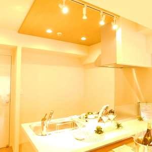 藤和シティコア池袋(3階,)のキッチン