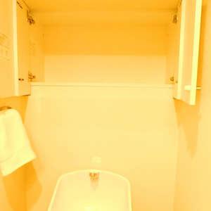 藤和シティコア池袋(3階,)のトイレ