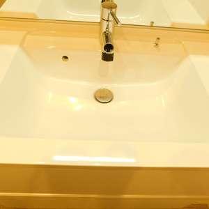 サンサーラ池袋(2階,)の化粧室・脱衣所・洗面室