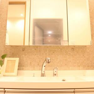 シティハイツ根津(2階,)の化粧室・脱衣所・洗面室