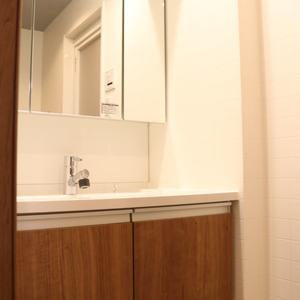 シーアイマンション根津弥生坂(2階,3080万円)の化粧室・脱衣所・洗面室