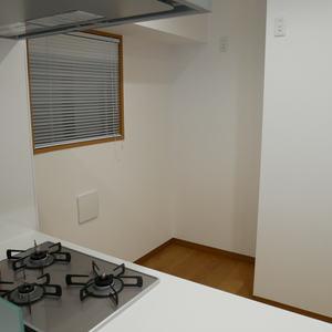 ダイアパレス元浅草ブライトスクエア(2階,)のキッチン