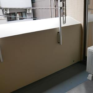 プリムローズ浅草ウエスト(3階,5480万円)のバルコニー