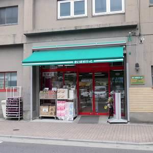 プリムローズ浅草ウエストの周辺の食品スーパー、コンビニなどのお買い物