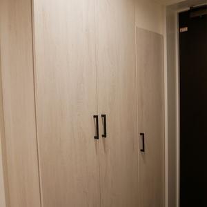 プリムローズ浅草ウエスト(3階,5780万円)のお部屋の玄関