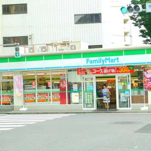 目白ガーデンヒルズC棟の周辺の食品スーパー、コンビニなどのお買い物