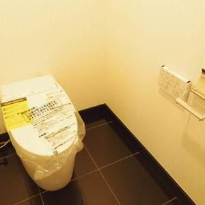 シティタワー新宿新都心(27階,)のトイレ