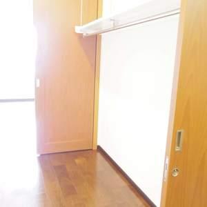 シティタワー新宿新都心(27階,)のウォークインクローゼット