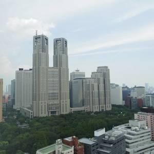 シティタワー新宿新都心(27階,)のお部屋からの眺望