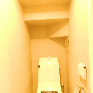 マンション雅叙苑3号館(3階,)のトイレ