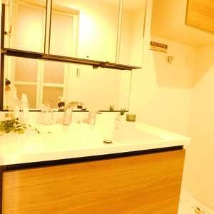 マンション雅叙苑5号館(7階,)の化粧室・脱衣所・洗面室