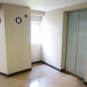 マンション雅叙苑5号館のエレベーターホール、エレベーター内
