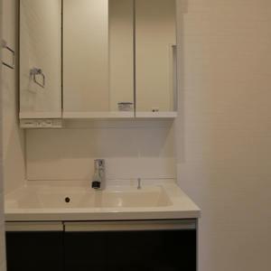 グリーンパーク天神(8階,)の化粧室・脱衣所・洗面室