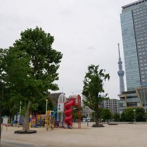 中銀錦糸町マンシオンの近くの公園・緑地
