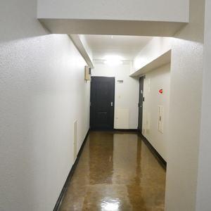 中銀錦糸町マンシオン(5階,)のフロア廊下(エレベーター降りてからお部屋まで)