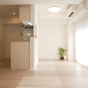 中銀錦糸町マンシオン(5階,)の居間(リビング・ダイニング・キッチン)