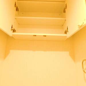 グランシティ早稲田(2階,5180万円)のトイレ