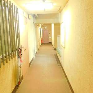 ニチメン目白ハイツ(3階,)のフロア廊下(エレベーター降りてからお部屋まで)