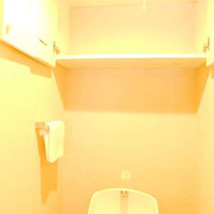 ニチメン目白ハイツ(3階,)のトイレ