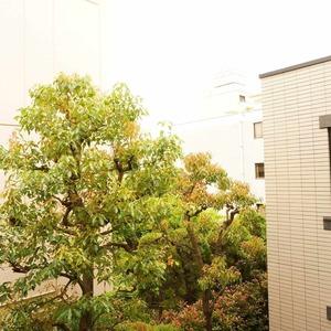 松濤ガーデン(2階,)のお部屋からの眺望