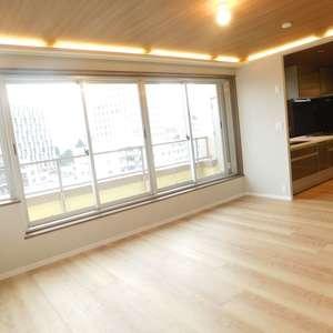 音羽ハウス(9階,)の居間(リビング・ダイニング・キッチン)