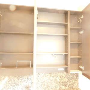 音羽ハウス(9階,8980万円)の化粧室・脱衣所・洗面室