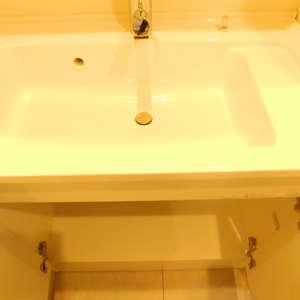 サンパティオ高田馬場(2階,)の化粧室・脱衣所・洗面室