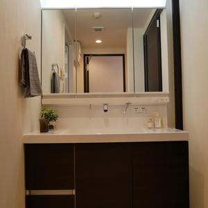 藤和菊川ホームズ(12階,)の化粧室・脱衣所・洗面室