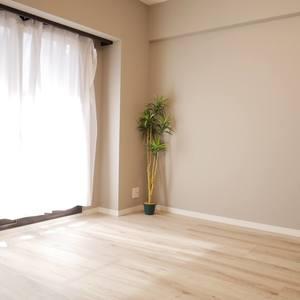 藤和菊川ホームズ(5階,)の洋室