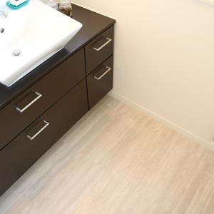 牛込中央マンション(5階,)の化粧室・脱衣所・洗面室
