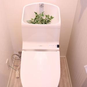 牛込中央マンション(5階,)のトイレ