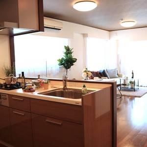 牛込中央マンション(5階,)の居間(リビング・ダイニング・キッチン)