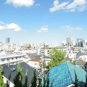 ライオンズマンション中野坂上(3階,)のお部屋からの眺望