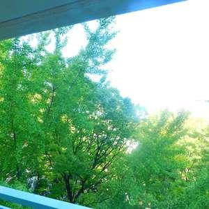 セレクトガーデン池袋(6階,2980万円)のお部屋からの眺望