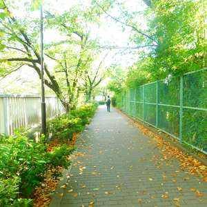 日興パレス高田馬場の近くの公園・緑地