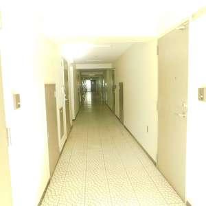 日興パレス高田馬場(2階,)のフロア廊下(エレベーター降りてからお部屋まで)