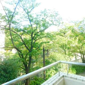 日興パレス高田馬場(2階,)のお部屋からの眺望