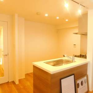 藤和シティホームズ神楽坂(2階,5980万円)のキッチン