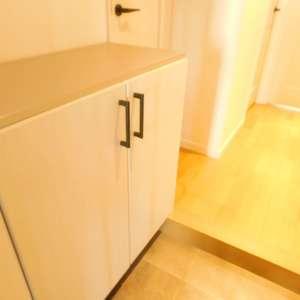 グリーンキャピタル神楽坂(2階,3780万円)のお部屋の玄関