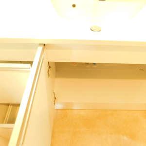 グランシャリオ神楽坂(7階,)の化粧室・脱衣所・洗面室