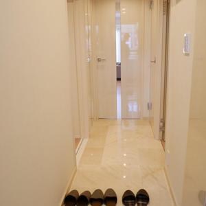 菊川パークホームズ(6階,)のお部屋の廊下