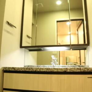 ウィルローズ市谷柳町(7階,)の化粧室・脱衣所・洗面室