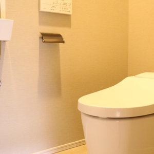 ウィルローズ市谷柳町(7階,)のトイレ