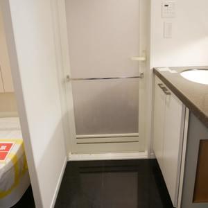 パンセフレスコ(12階,)の化粧室・脱衣所・洗面室