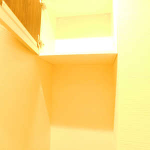 戸山マンション(2階,4299万円)のトイレ